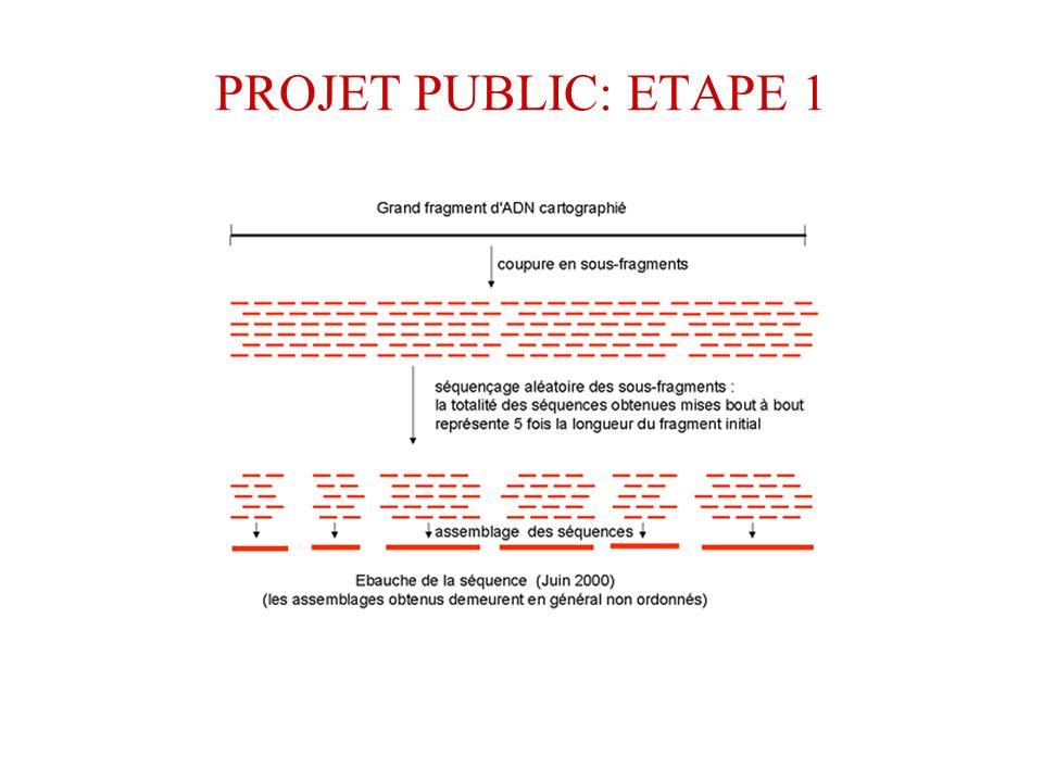 PROJET PUBLIC: ETAPE 1