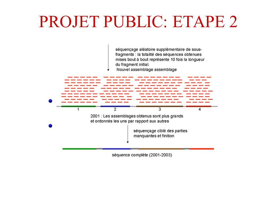 PROJET PUBLIC: ETAPE 2