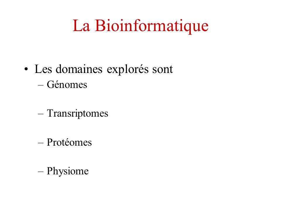 La Bioinformatique Les domaines explorés sont –Génomes –Transriptomes –Protéomes –Physiome