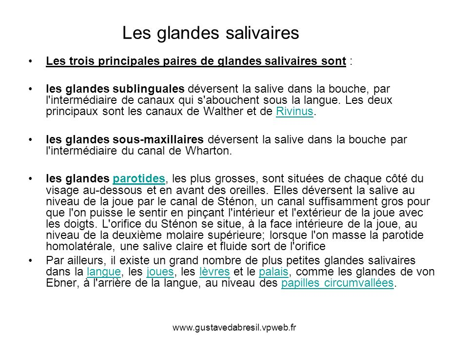 www.gustavedabresil.vpweb.fr