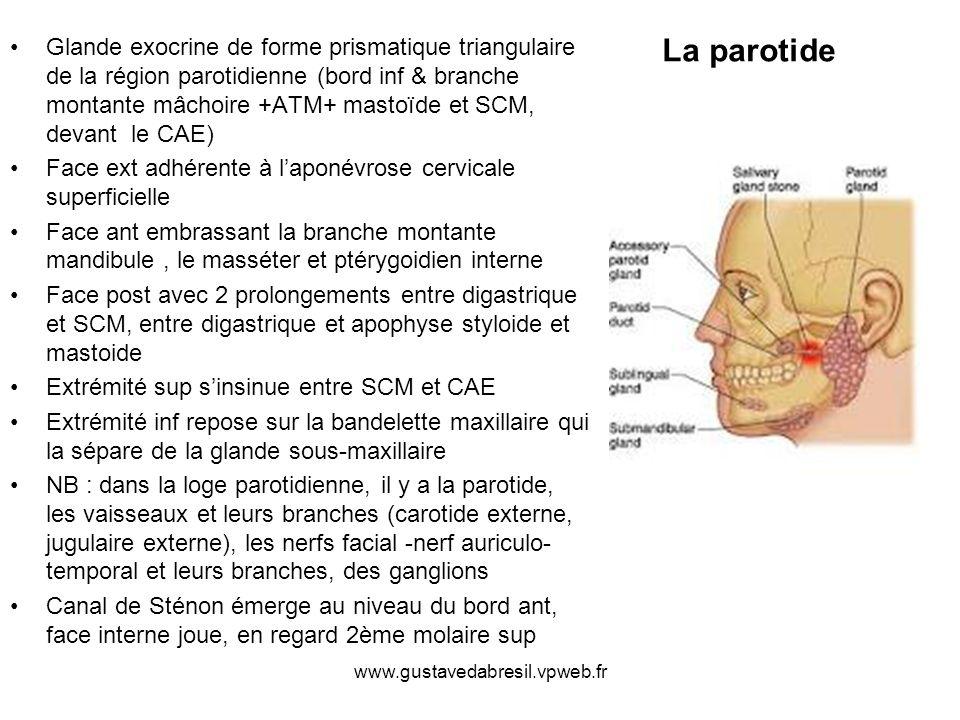 www.gustavedabresil.vpweb.fr EPR EP EM