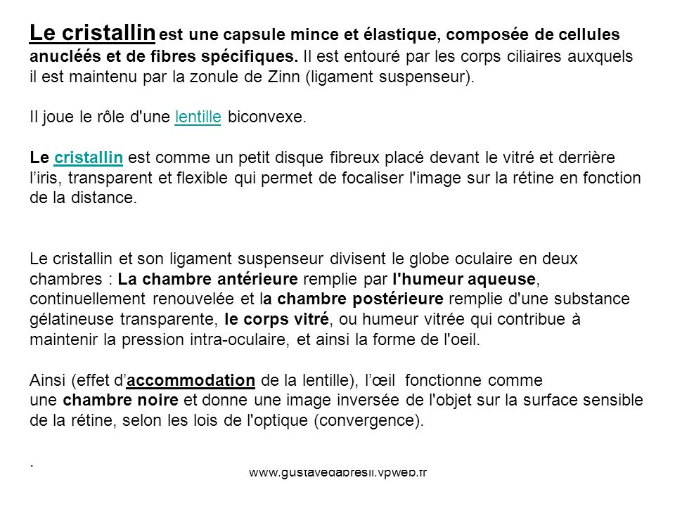www.gustavedabresil.vpweb.fr Le cristallin est une capsule mince et élastique, composée de cellules anucléés et de fibres spécifiques. Il est entouré