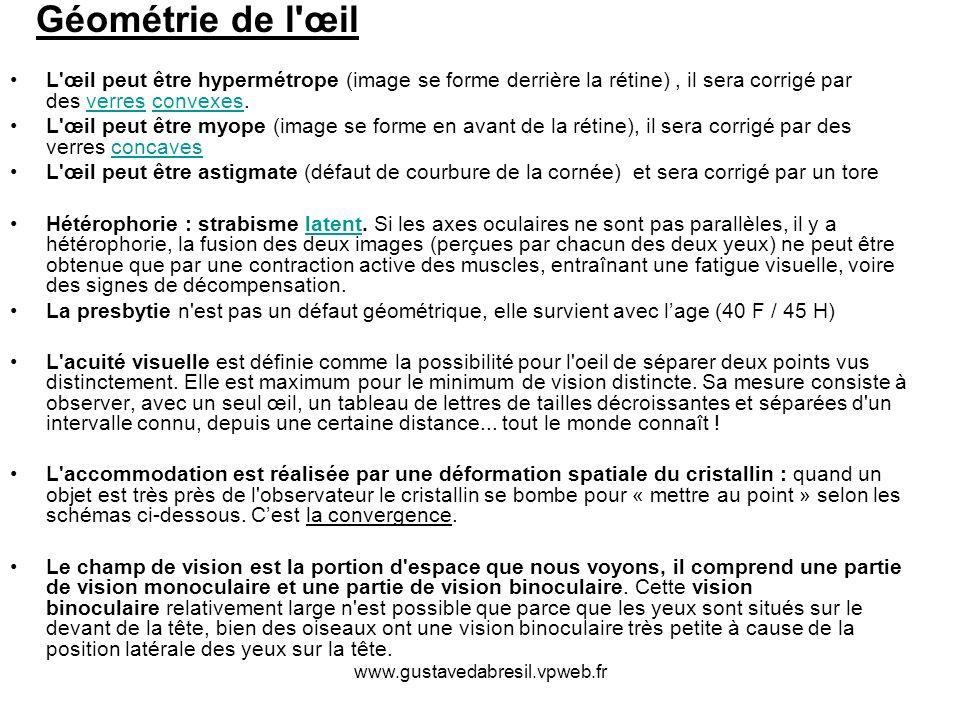 www.gustavedabresil.vpweb.fr Géométrie de l'œil L'œil peut être hypermétrope (image se forme derrière la rétine), il sera corrigé par des verres conve