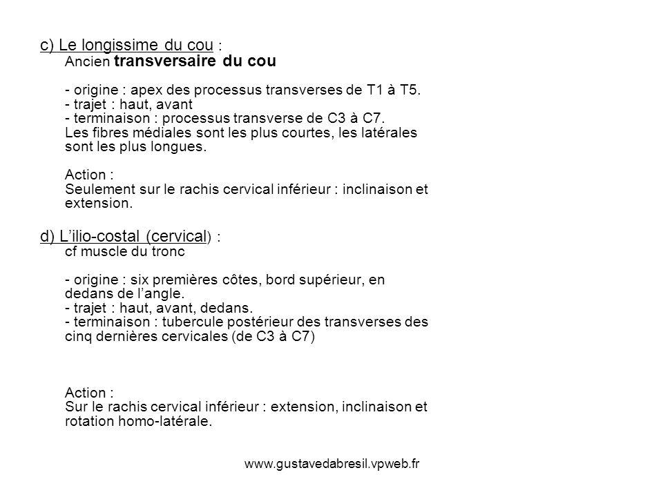 www.gustavedabresil.vpweb.fr c) Le longissime du cou : Ancien transversaire du cou - origine : apex des processus transverses de T1 à T5. - trajet : h
