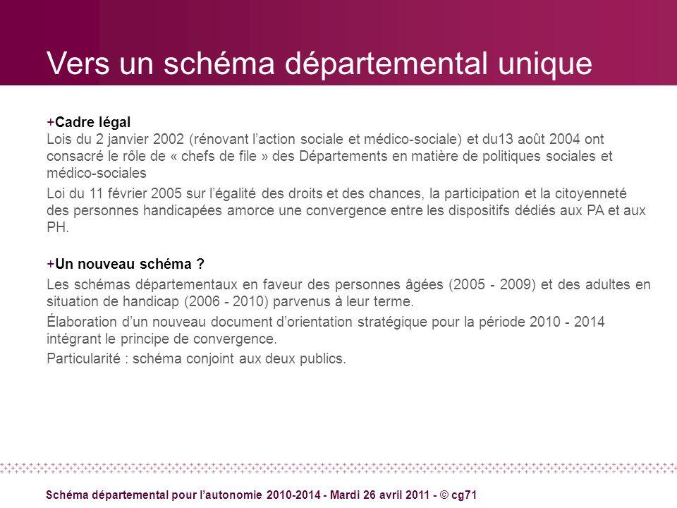 Vers un schéma départemental unique +Cadre légal Lois du 2 janvier 2002 (rénovant laction sociale et médico-sociale) et du13 août 2004 ont consacré le