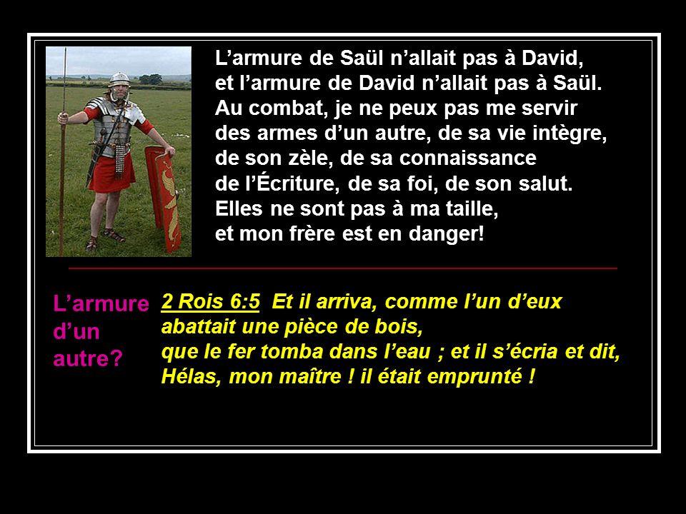 Larmure de Saül nallait pas à David, et larmure de David nallait pas à Saül. Au combat, je ne peux pas me servir des armes dun autre, de sa vie intègr