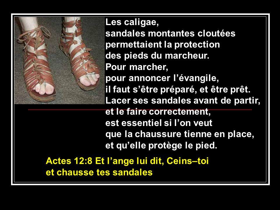 Les caligae, sandales montantes cloutées permettaient la protection des pieds du marcheur. Pour marcher, pour annoncer lévangile, il faut sêtre prépar