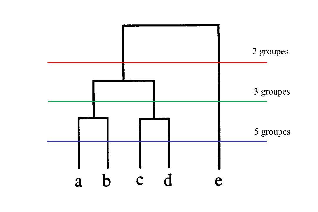2 groupes 5 groupes 3 groupes