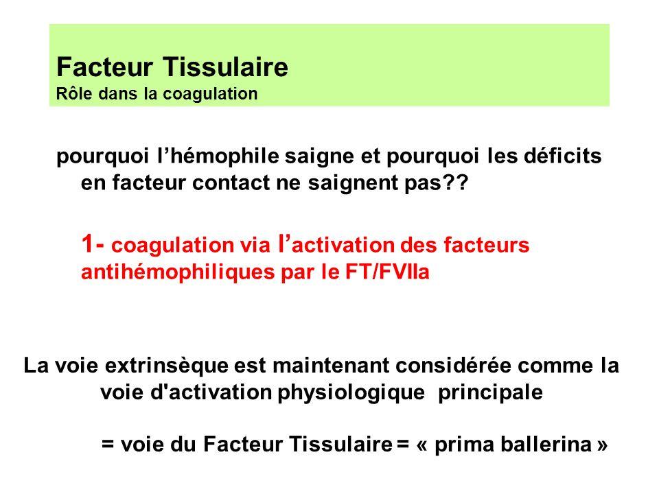 Facteur Tissulaire Rôle dans la coagulation La voie extrinsèque est maintenant considérée comme la voie d'activation physiologique principale = voie d