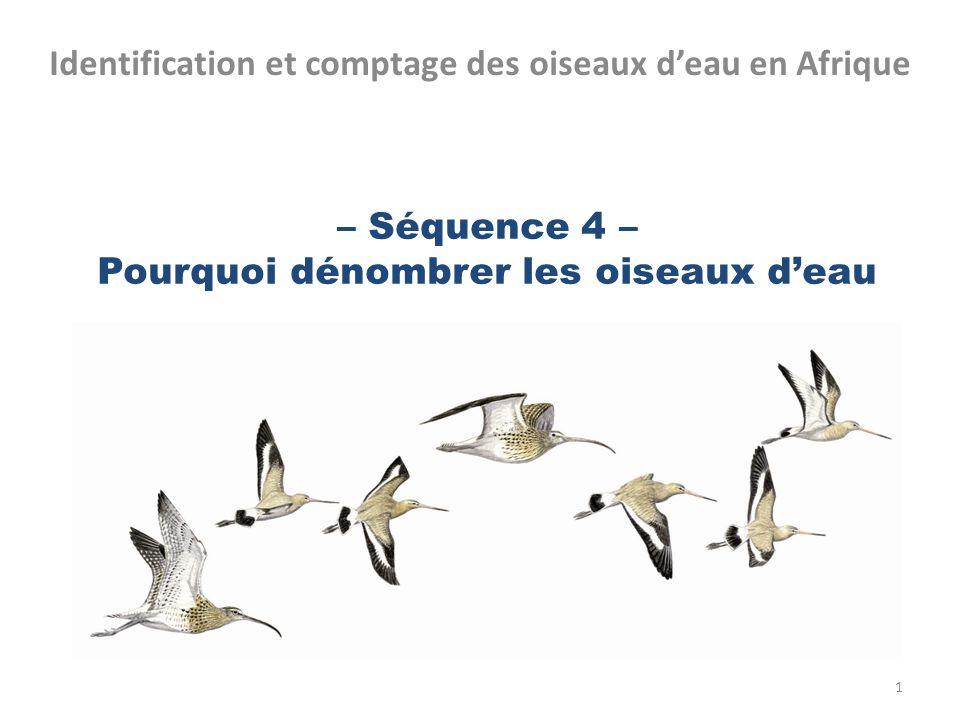 – Séquence 4 – Pourquoi dénombrer les oiseaux deau Identification et comptage des oiseaux deau en Afrique 1