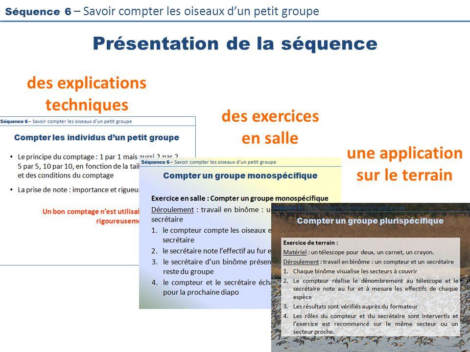 Séquence 6 – Savoir compter les oiseaux dun petit groupe Présentation de la séquence des explications techniques des exercices en salle une applicatio