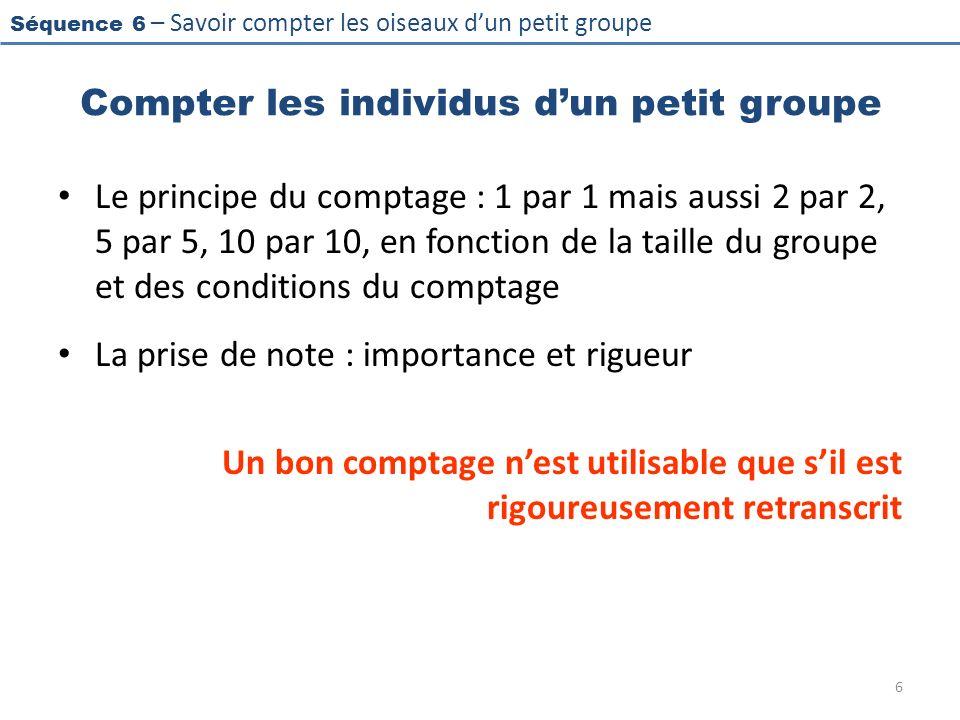 Séquence 6 – Savoir compter les oiseaux dun petit groupe Compter les individus dun petit groupe Le principe du comptage : 1 par 1 mais aussi 2 par 2,
