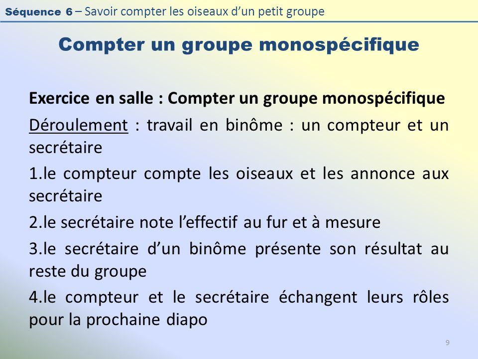 Séquence 6 – Savoir compter les oiseaux dun petit groupe Compter un groupe monospécifique Exercice en salle : Compter un groupe monospécifique Déroule
