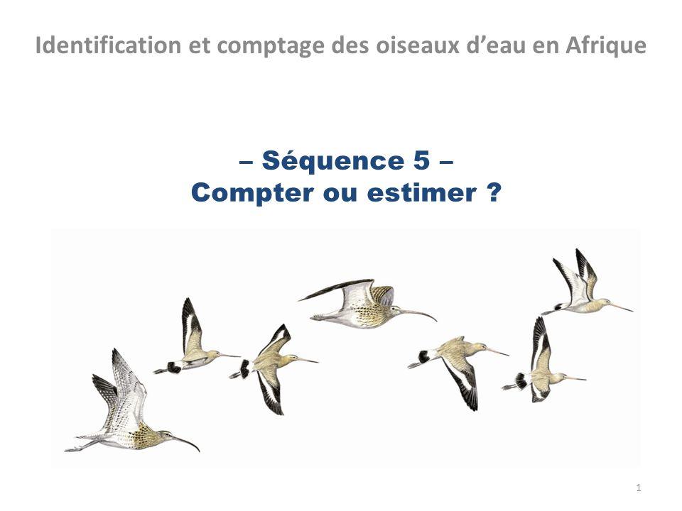 – Séquence 5 – Compter ou estimer ? Identification et comptage des oiseaux deau en Afrique 1
