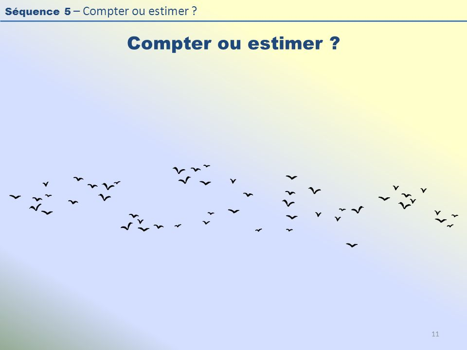 Séquence 5 – Compter ou estimer ? Compter ou estimer ? 11