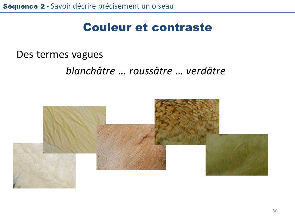 Séquence 2 - Savoir décrire précisément un oiseau Couleur et contraste Des termes vagues blanchâtre … roussâtre … verdâtre 30