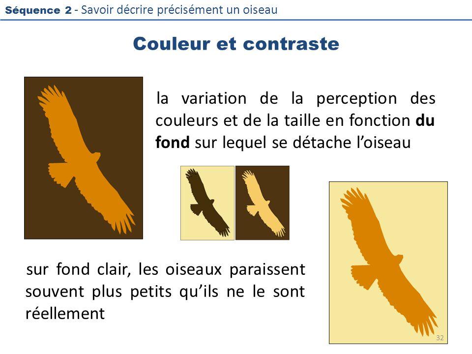 Séquence 2 - Savoir décrire précisément un oiseau Couleur et contraste la variation de la perception des couleurs et de la taille en fonction du fond