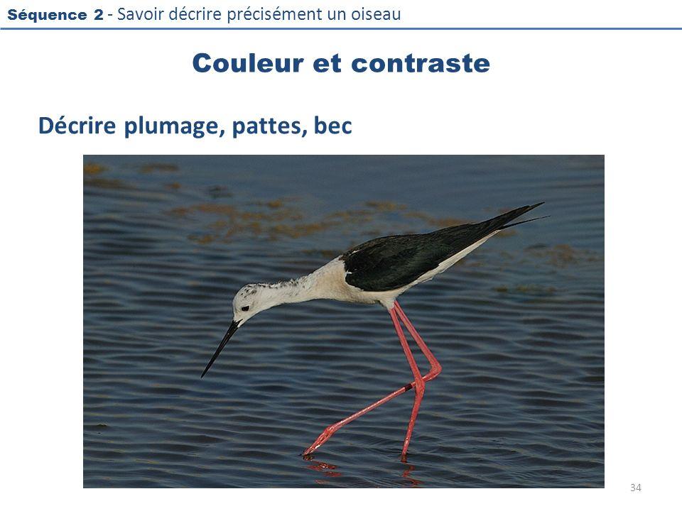 Séquence 2 - Savoir décrire précisément un oiseau Couleur et contraste Décrire plumage, pattes, bec 34