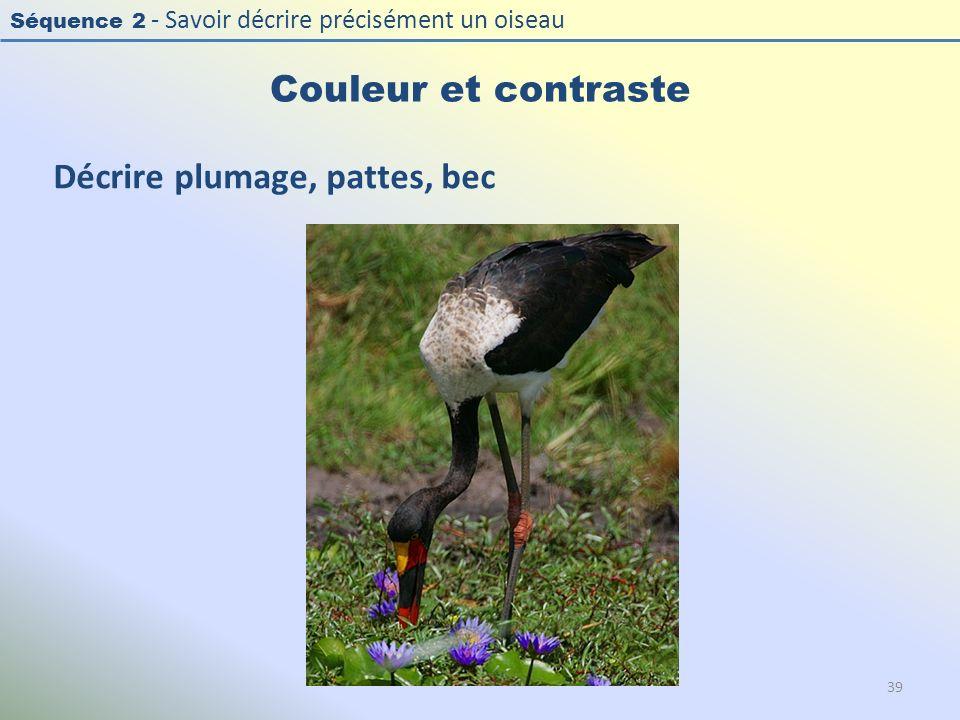 Séquence 2 - Savoir décrire précisément un oiseau Couleur et contraste Décrire plumage, pattes, bec 39