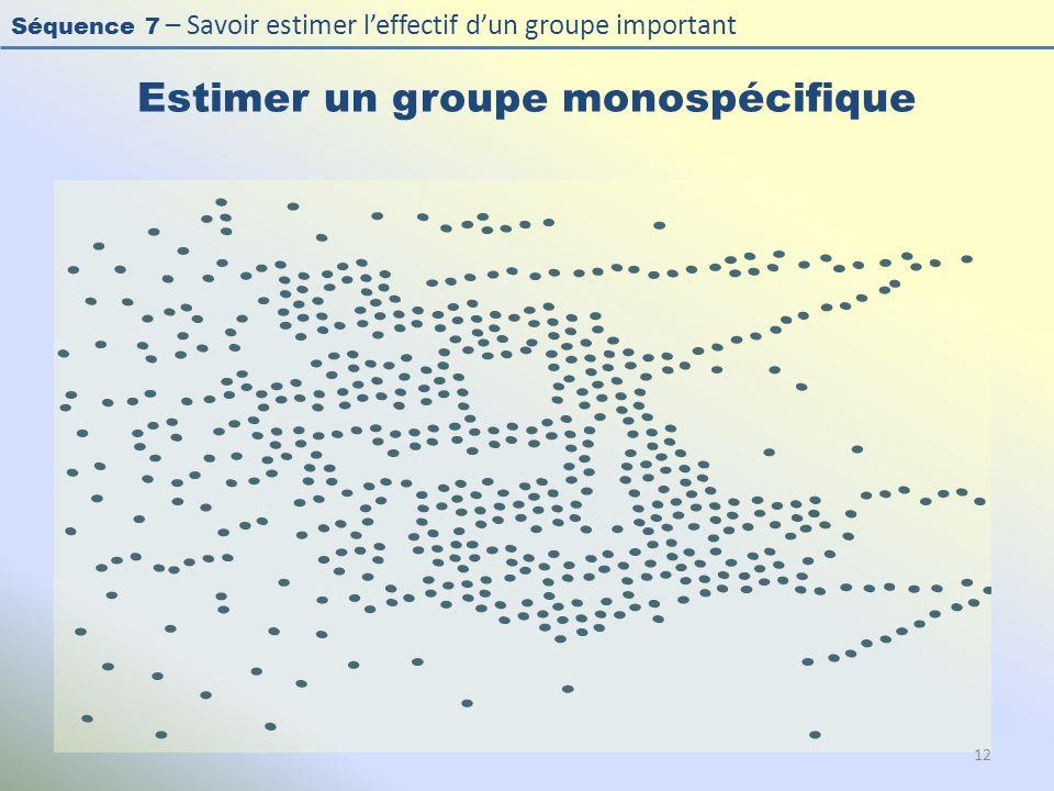 Séquence 7 – Savoir estimer leffectif dun groupe important Estimer un groupe monospécifique 12