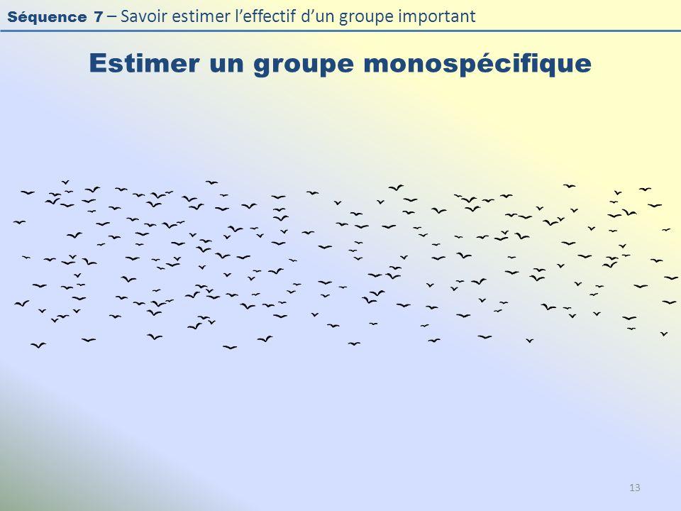 Séquence 7 – Savoir estimer leffectif dun groupe important Estimer un groupe monospécifique 13
