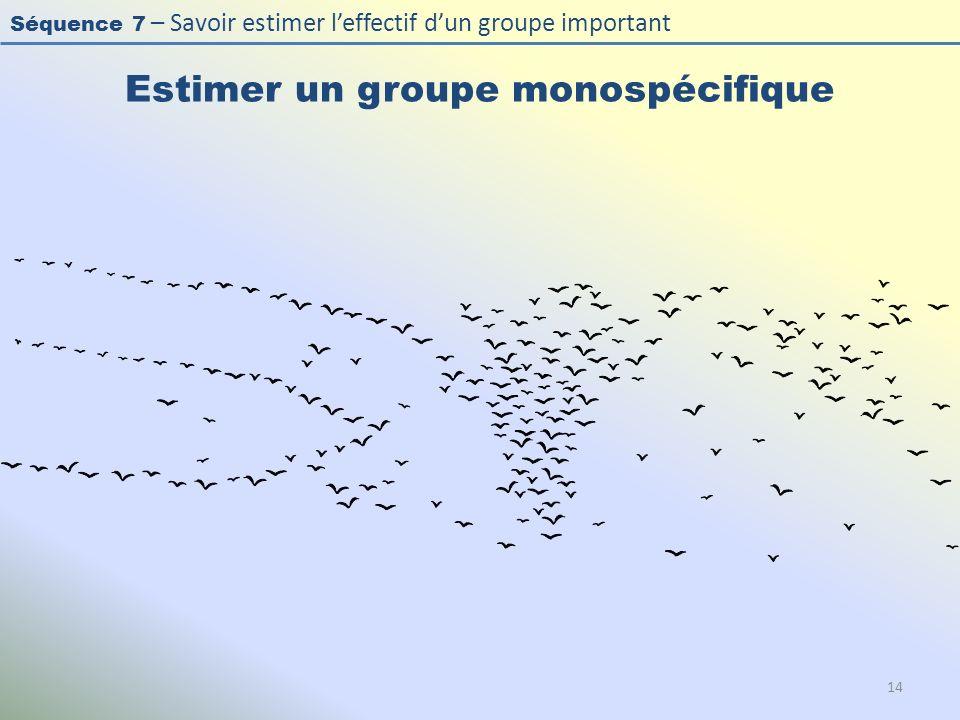 Séquence 7 – Savoir estimer leffectif dun groupe important Estimer un groupe monospécifique 14