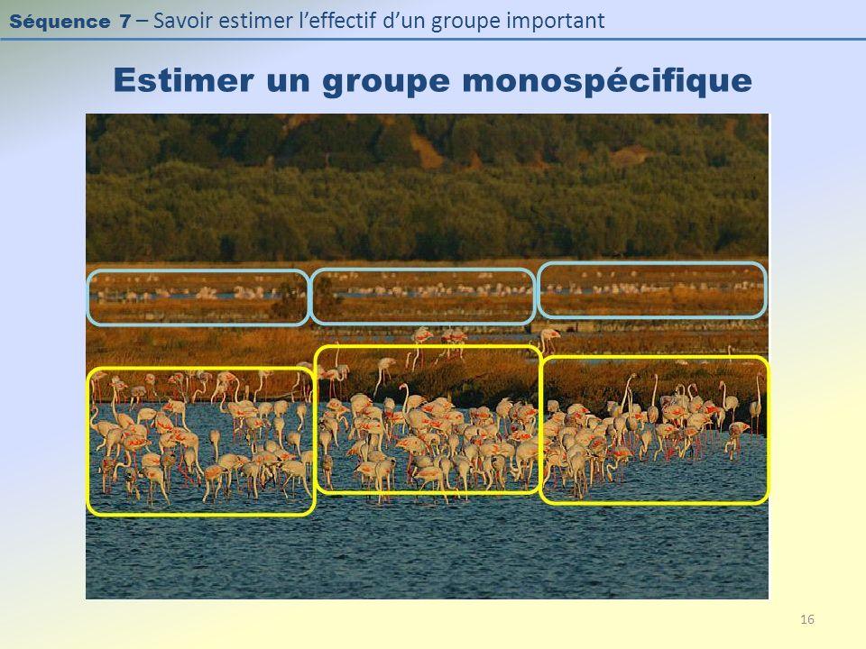 Séquence 7 – Savoir estimer leffectif dun groupe important Estimer un groupe monospécifique 16