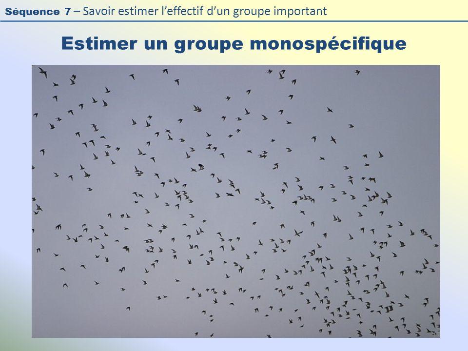 Séquence 7 – Savoir estimer leffectif dun groupe important Estimer un groupe monospécifique 17