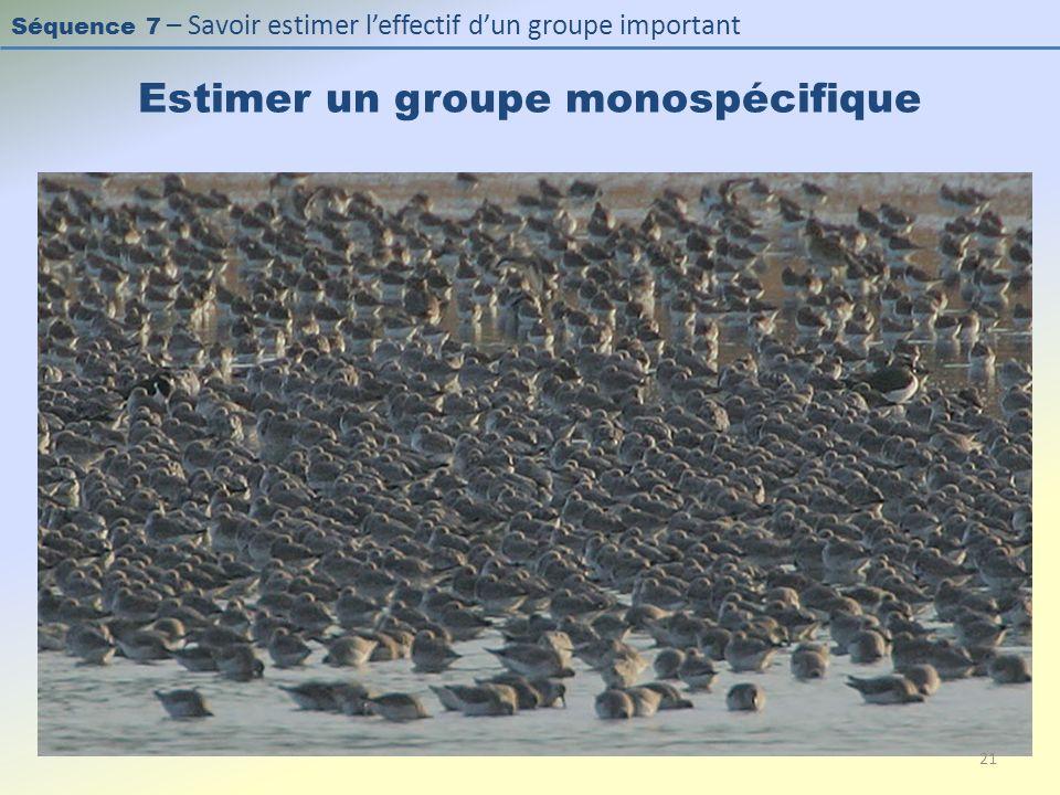 Séquence 7 – Savoir estimer leffectif dun groupe important Estimer un groupe monospécifique 21