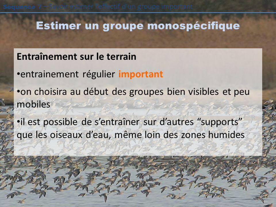 Séquence 7 – Savoir estimer leffectif dun groupe important Estimer un groupe monospécifique Entraînement sur le terrain entrainement régulier importan