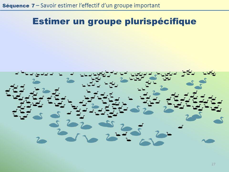 Séquence 7 – Savoir estimer leffectif dun groupe important Estimer un groupe plurispécifique 27