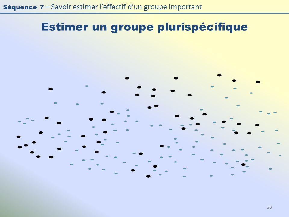 Séquence 7 – Savoir estimer leffectif dun groupe important Estimer un groupe plurispécifique 28