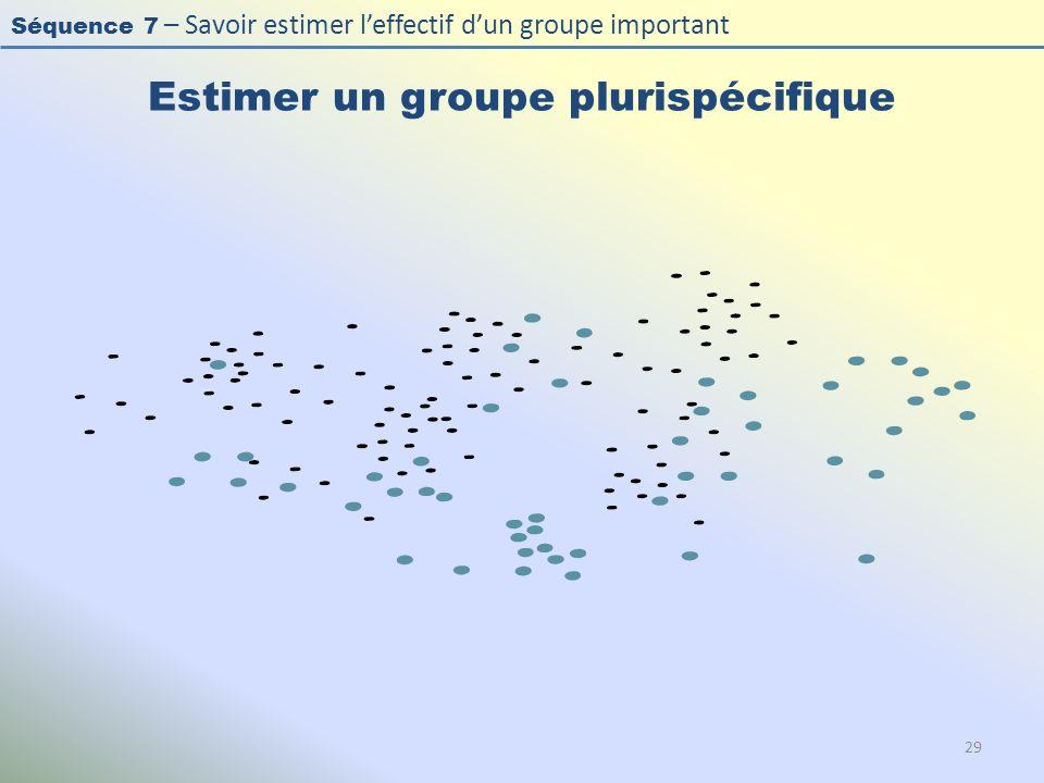 Séquence 7 – Savoir estimer leffectif dun groupe important Estimer un groupe plurispécifique 29