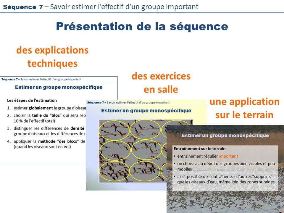 Séquence 7 – Savoir estimer leffectif dun groupe important Présentation de la séquence des explications techniques des exercices en salle une applicat