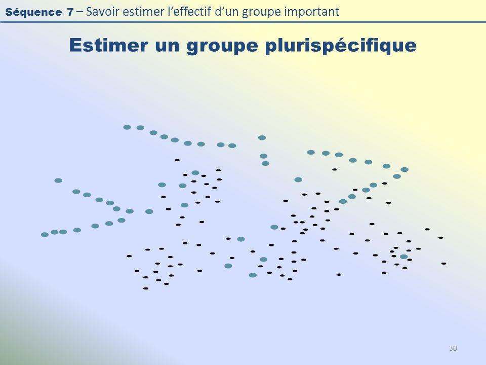 Séquence 7 – Savoir estimer leffectif dun groupe important Estimer un groupe plurispécifique 30