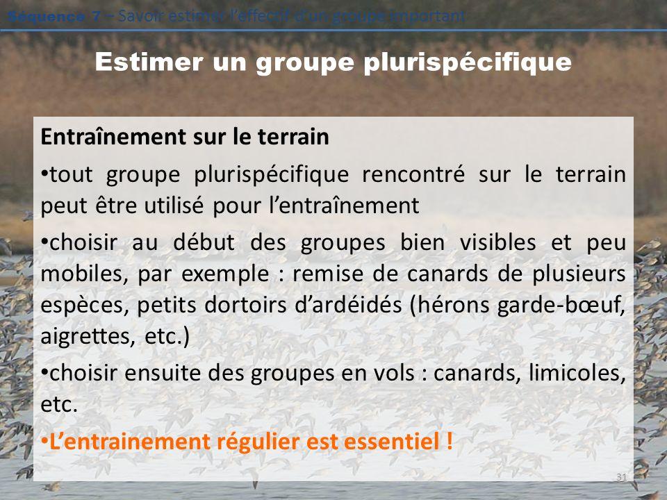 Séquence 7 – Savoir estimer leffectif dun groupe important Estimer un groupe plurispécifique Entraînement sur le terrain tout groupe plurispécifique r