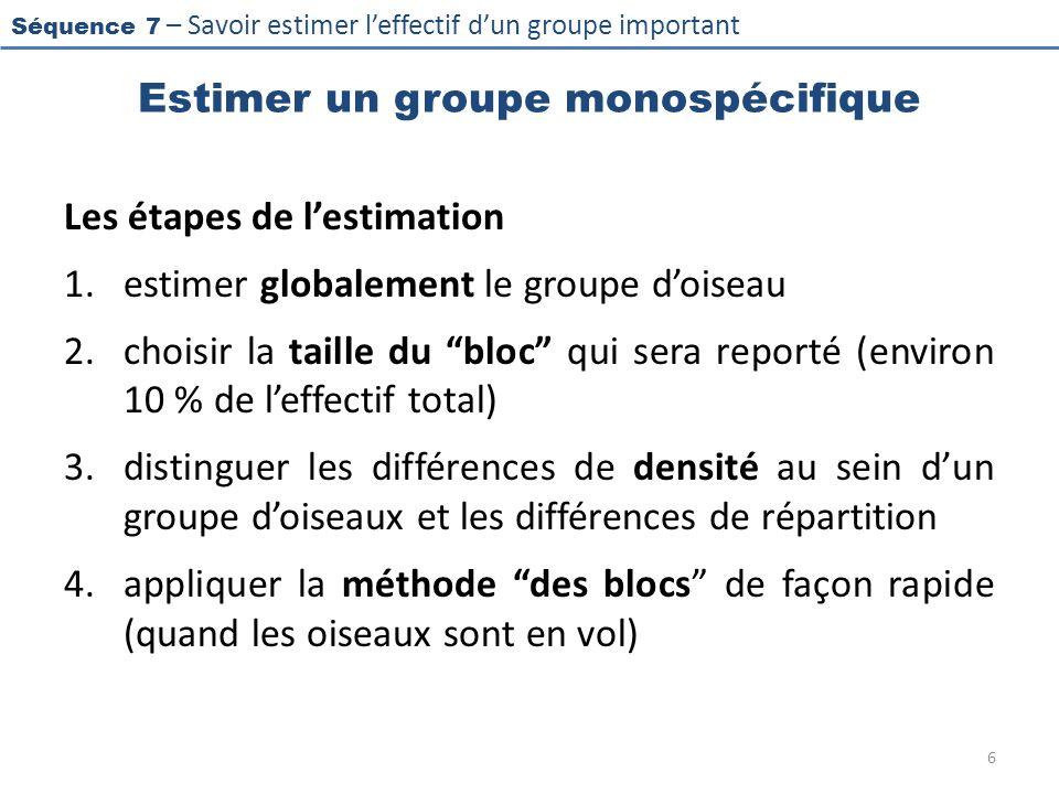 Séquence 7 – Savoir estimer leffectif dun groupe important Estimer un groupe monospécifique Les étapes de lestimation 1.estimer globalement le groupe