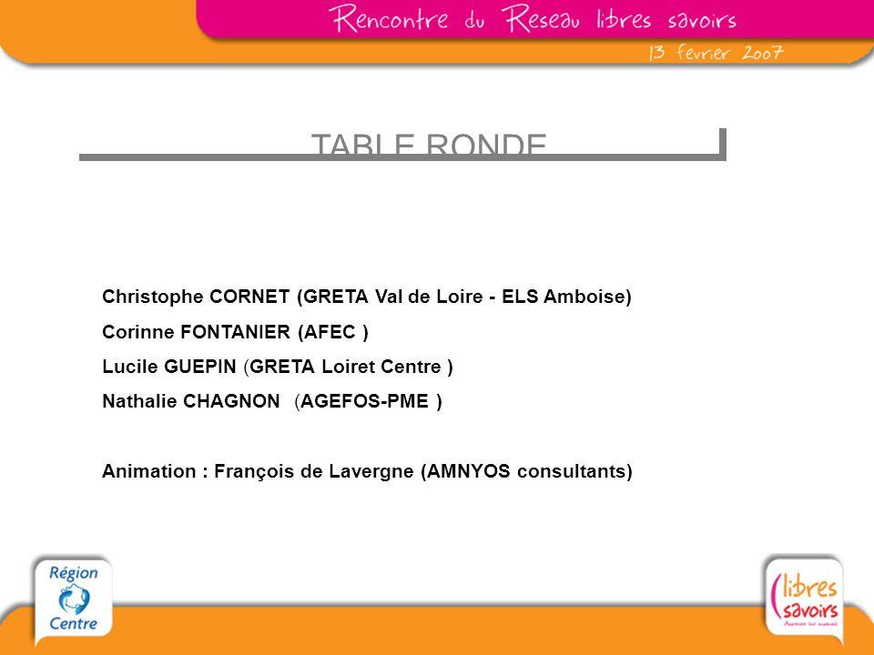 TABLE RONDE Christophe CORNET (GRETA Val de Loire - ELS Amboise) Corinne FONTANIER (AFEC ) Lucile GUEPIN (GRETA Loiret Centre ) Nathalie CHAGNON (AGEFOS-PME ) Animation : François de Lavergne (AMNYOS consultants)