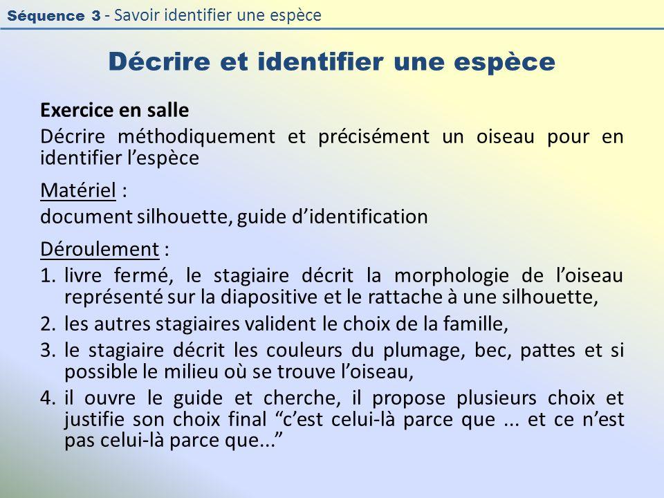 Séquence 3 - Savoir identifier une espèce Décrire et identifier une espèce Exercice en salle Décrire méthodiquement et précisément un oiseau pour en i