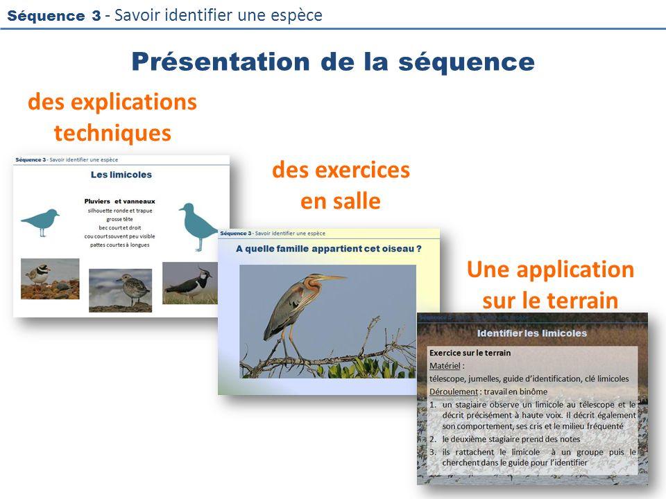 Séquence 3 - Savoir identifier une espèce Présentation de la séquence des explications techniques des exercices en salle 3 Une application sur le terr