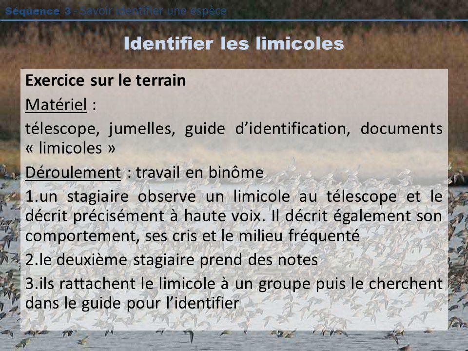 Séquence 3 - Savoir identifier une espèce Identifier les limicoles Exercice sur le terrain Matériel : télescope, jumelles, guide didentification, docu