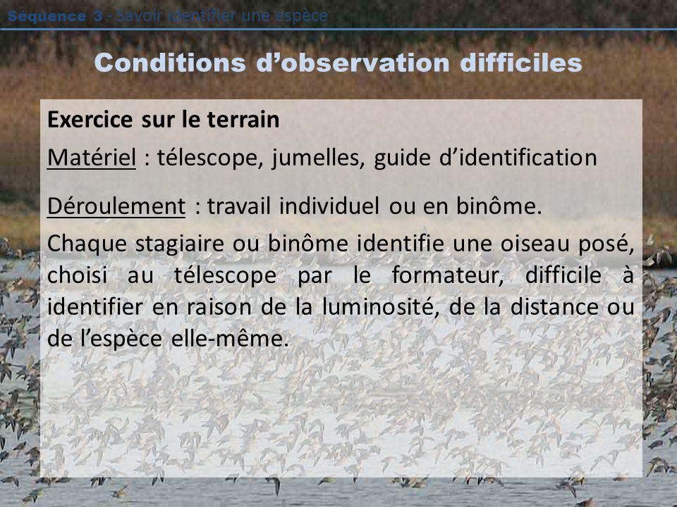 Séquence 3 - Savoir identifier une espèce Conditions dobservation difficiles Exercice sur le terrain Matériel : télescope, jumelles, guide didentifica