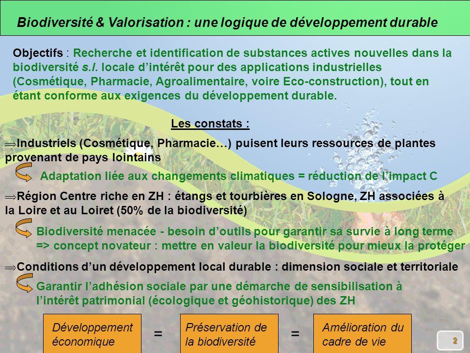 2 Région Centre riche en ZH : étangs et tourbières en Sologne, ZH associées à la Loire et au Loiret (50% de la biodiversité) Biodiversité menacée - besoin doutils pour garantir sa survie à long terme => concept novateur : mettre en valeur la biodiversité pour mieux la protéger Conditions dun développement local durable : dimension sociale et territoriale Garantir ladhésion sociale par une démarche de sensibilisation à lintérêt patrimonial (écologique et géohistorique) des ZH Les constats : Adaptation liée aux changements climatiques = réduction de limpact C Industriels (Cosmétique, Pharmacie…) puisent leurs ressources de plantes provenant de pays lointains Développement économique Préservation de la biodiversité Amélioration du cadre de vie == Biodiversité & Valorisation : une logique de développement durable Objectifs : Recherche et identification de substances actives nouvelles dans la biodiversité s.l.