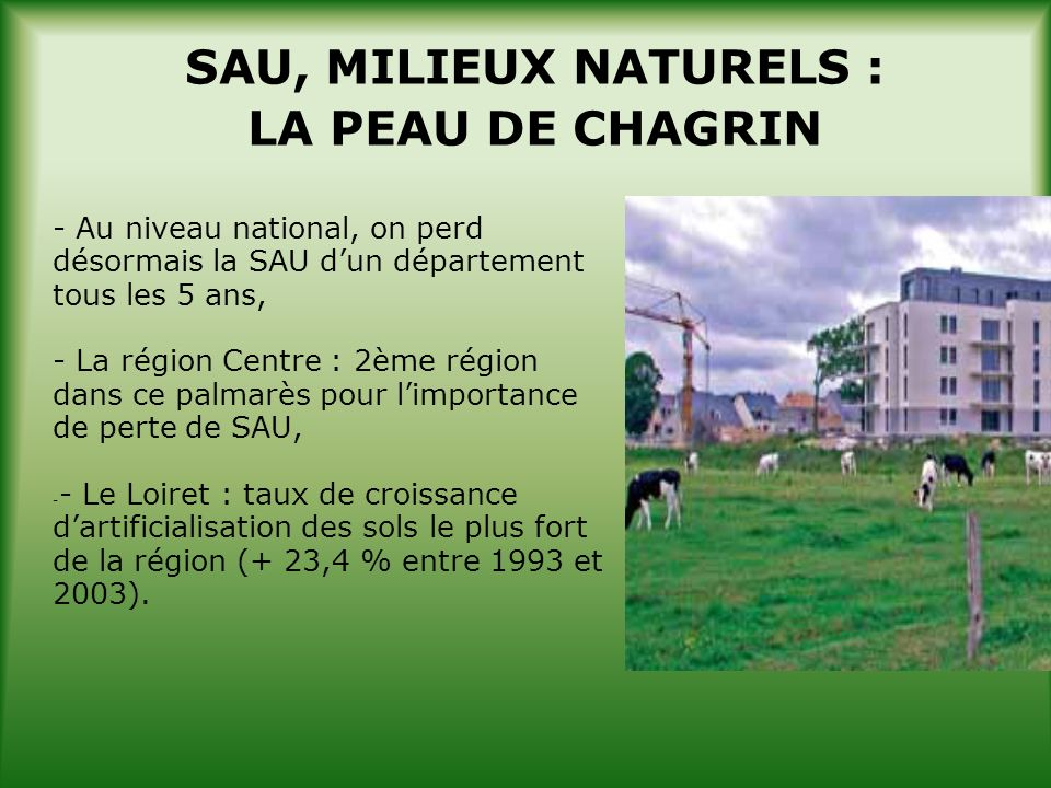 SAU, MILIEUX NATURELS : LA PEAU DE CHAGRIN - Au niveau national, on perd désormais la SAU dun département tous les 5 ans, - La région Centre : 2ème région dans ce palmarès pour limportance de perte de SAU, - - Le Loiret : taux de croissance dartificialisation des sols le plus fort de la région (+ 23,4 % entre 1993 et 2003).
