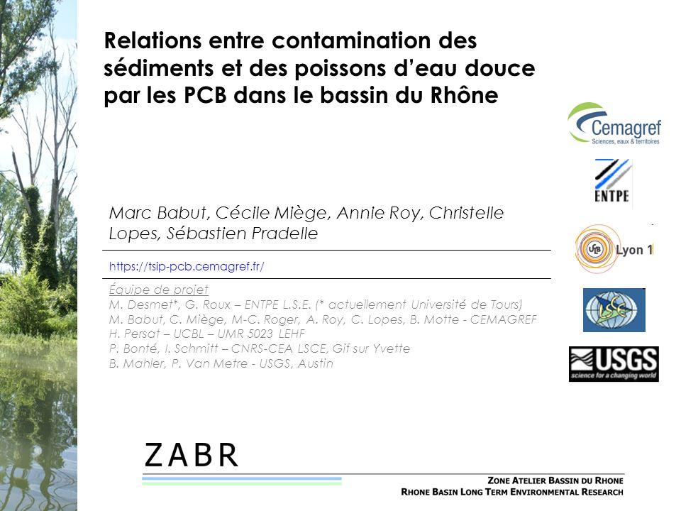 Relations entre contamination des sédiments et des poissons deau douce par les PCB dans le bassin du Rhône Marc Babut, Cécile Miège, Annie Roy, Christ
