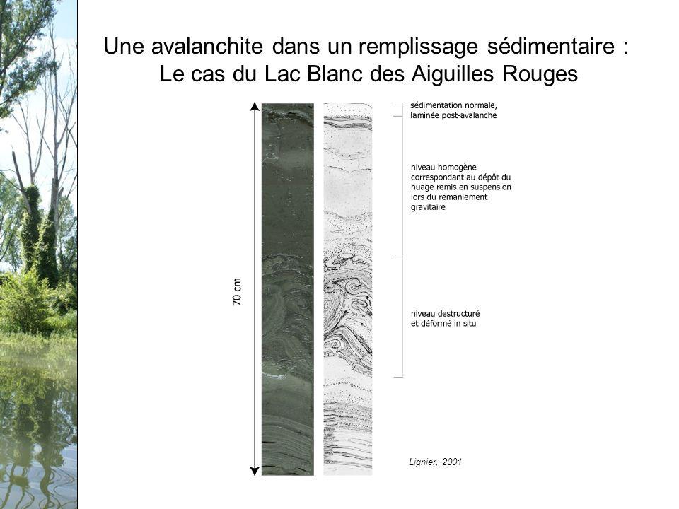 Séminaire PCB-Rhône, 12 février 2009 Une avalanchite dans un remplissage sédimentaire : Le cas du Lac Blanc des Aiguilles Rouges Lignier, 2001