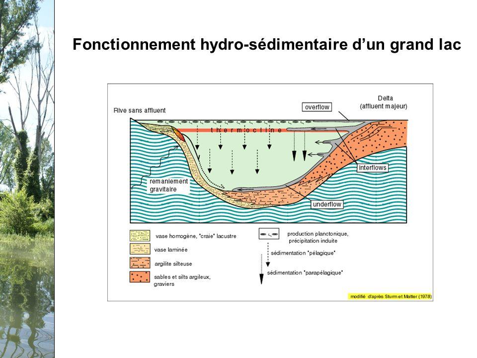 Séminaire PCB-Rhône, 12 février 2009 Fonctionnement hydro-sédimentaire dun grand lac