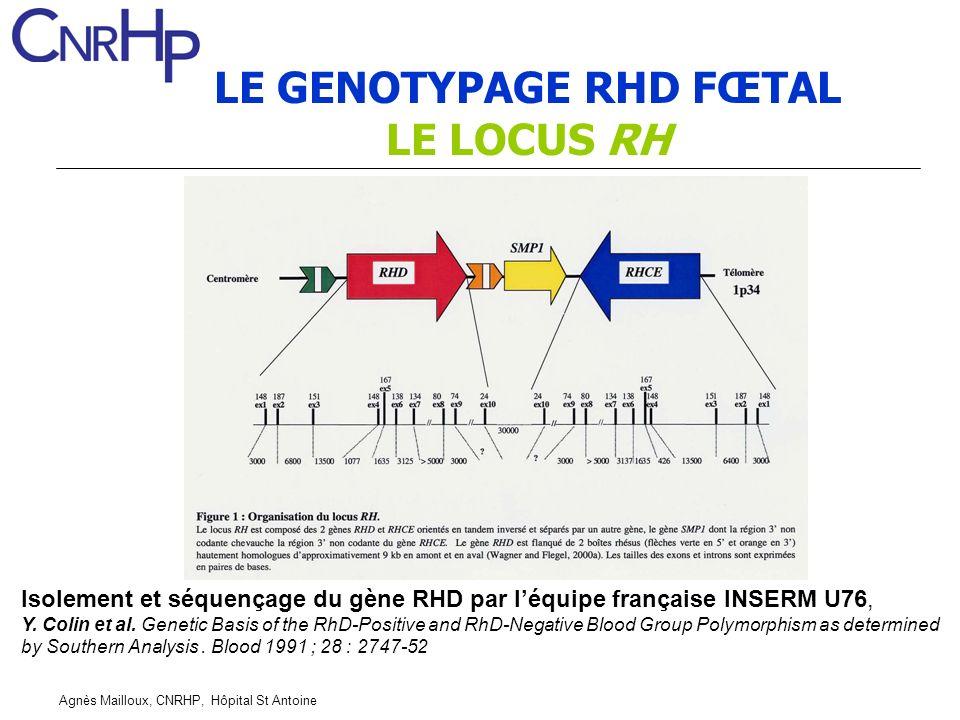 Agnès Mailloux, CNRHP, Hôpital St Antoine LE GENOTYPAGE RHD FŒTAL LE LOCUS RH Isolement et séquençage du gène RHD par léquipe française INSERM U76, Y.