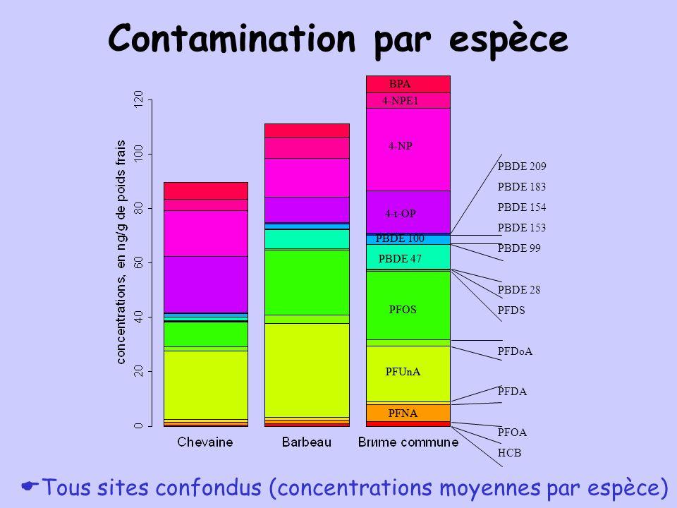 Contamination par espèce Tous sites confondus (concentrations moyennes par espèce) PFUnA PFNA PFOS PBDE 47 4-t-OP 4-NP 4-NPE1 BPA PBDE 100 PBDE 209 PB