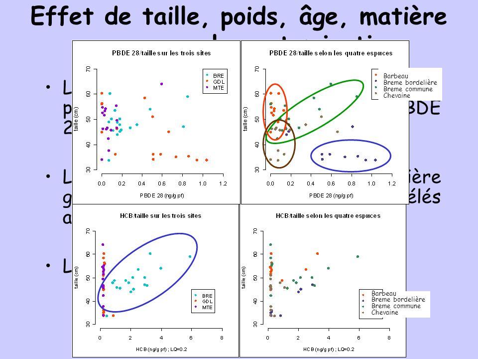 Effet de taille, poids, âge, matière grasse sur la contamination La taille est le paramètre qui se retrouve le plus souvent corrélé : pour le HCB, PBD